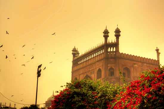 Exploring Delhi: Finding Reasons to Step Out!